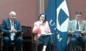 Intervención de Julia Marfán en el panel.